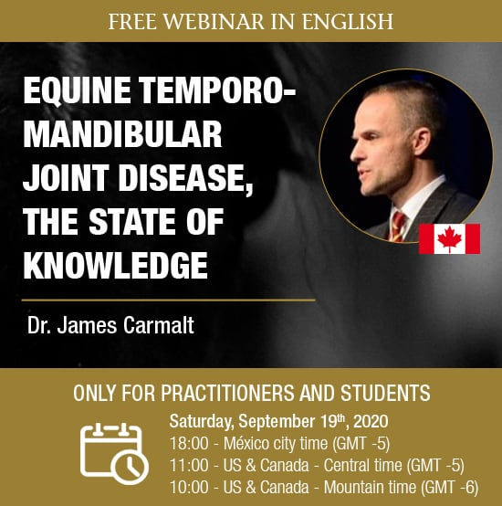 WEBINAR-HDE Dr Carmalt USA practitioners and students