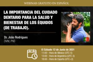 Webinar HDE - João Rodrigues